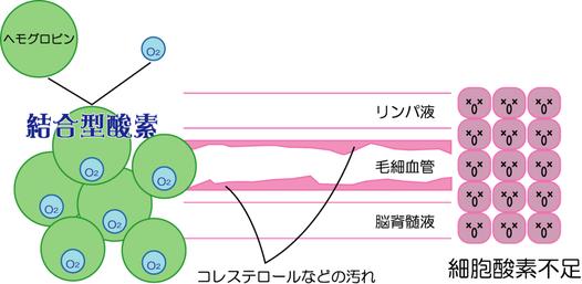 細胞酸素不足のイラスト