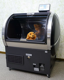 O2-PET(小型犬用)