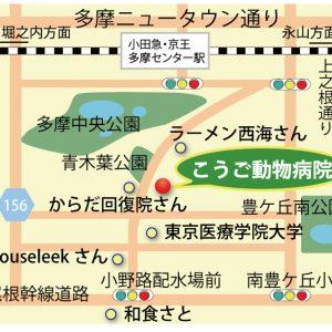 アクセス案内地図
